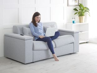 The Excelsior Sofa Bed